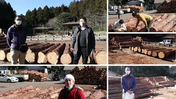 選木体験 ~コロナの感染拡大に伴い中止になりましたが、お客様ごと、動画で、選木の様子をお知らせしています~